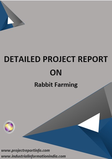 Project Report on Rabbit Farming