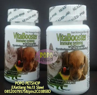 new vitabooster softgel