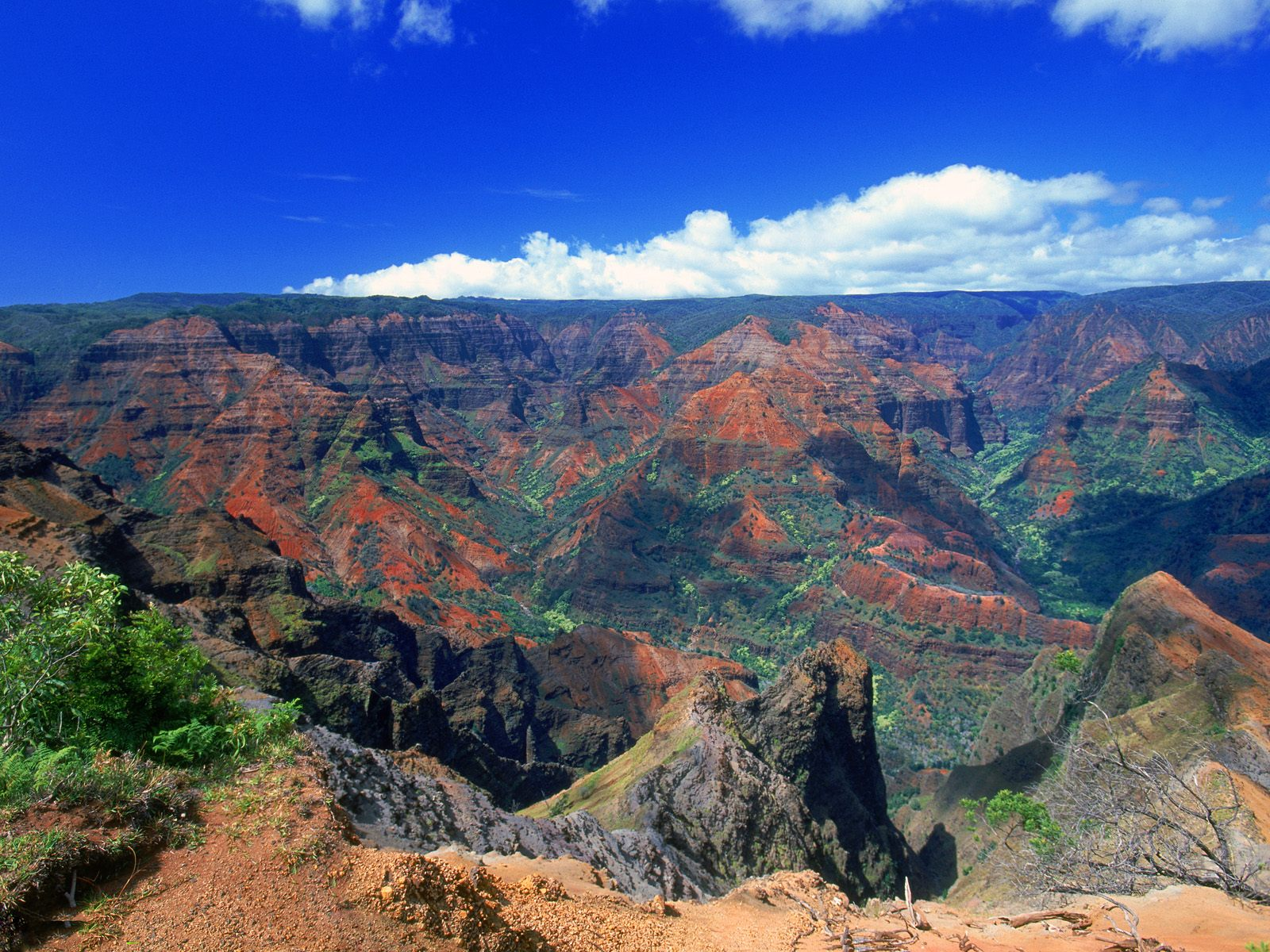 Kauai Hawaii: Sapphire Princess Odyssey 10/22/11