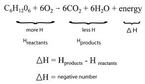 Molecular HydroCarbons: Energy in the Equation & Energy ...