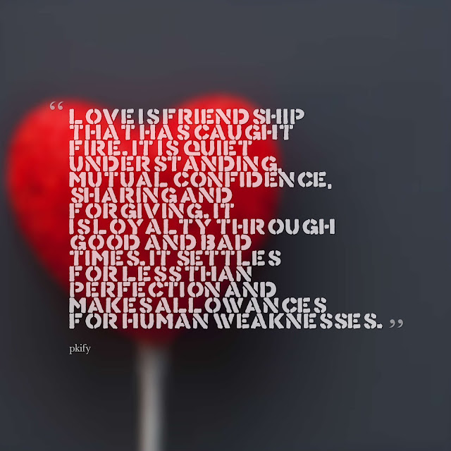 Love Is a Friendship That Has Caught Fire Love Quotes