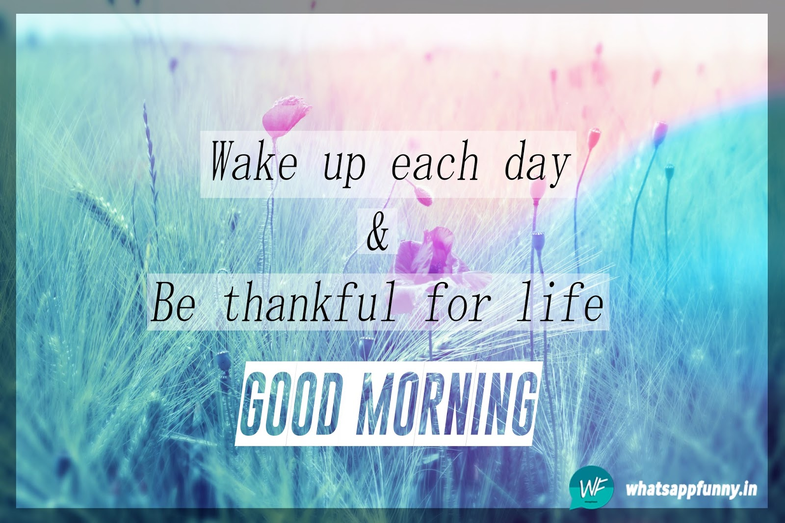 good morning images with nature quotes