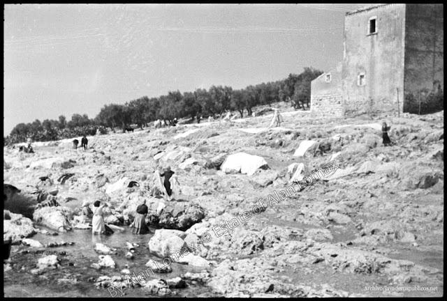 lavanderas-lago-di-varano