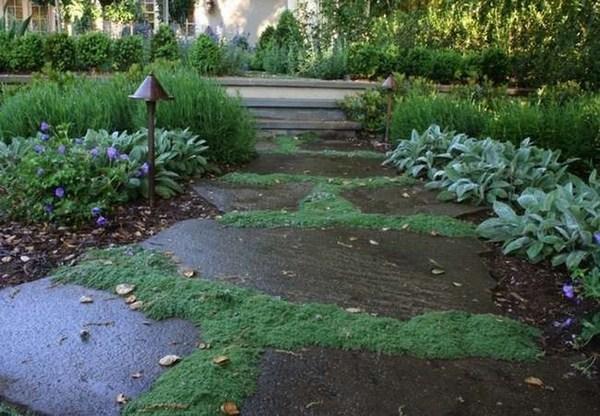 Garden Paths A Creative Design