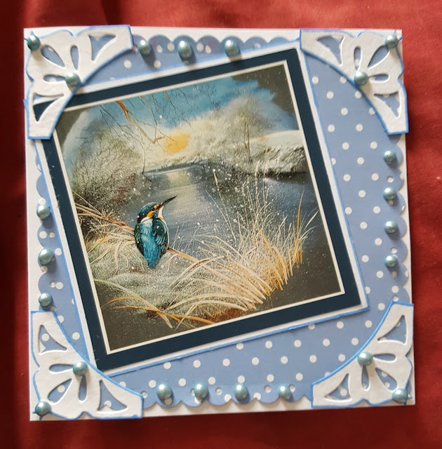 Whiffy the Kingfisher (Pollyanna Pickering) square card