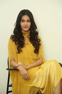 Amyra Dastur In Yellow Dress At Manasuku Nachindi Movie Interview (2)