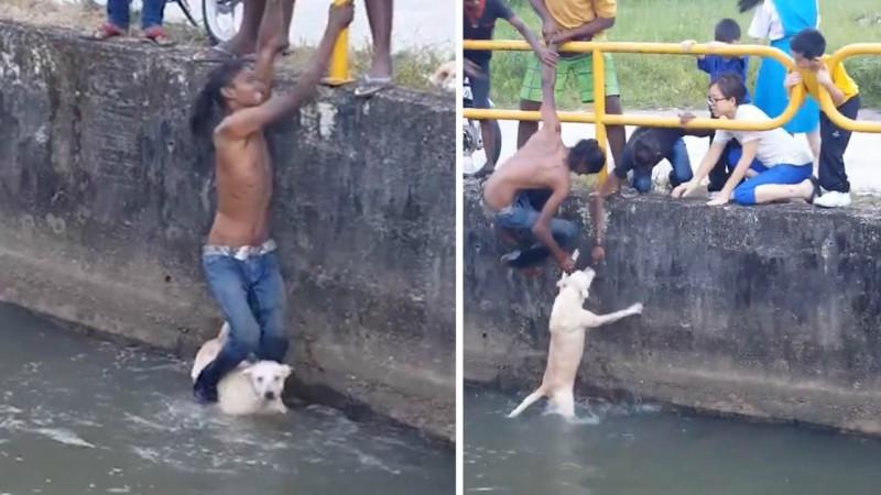 Νεαρός άνδρας στην Ινδία έσωσε σκυλί από πνιγμό χρησιμοποιώντας τα πόδια του! (βίντεο)