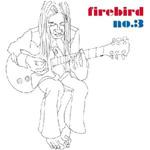 """FIREBIRD """"No. 3"""" CD. 2003. Bill Steer"""