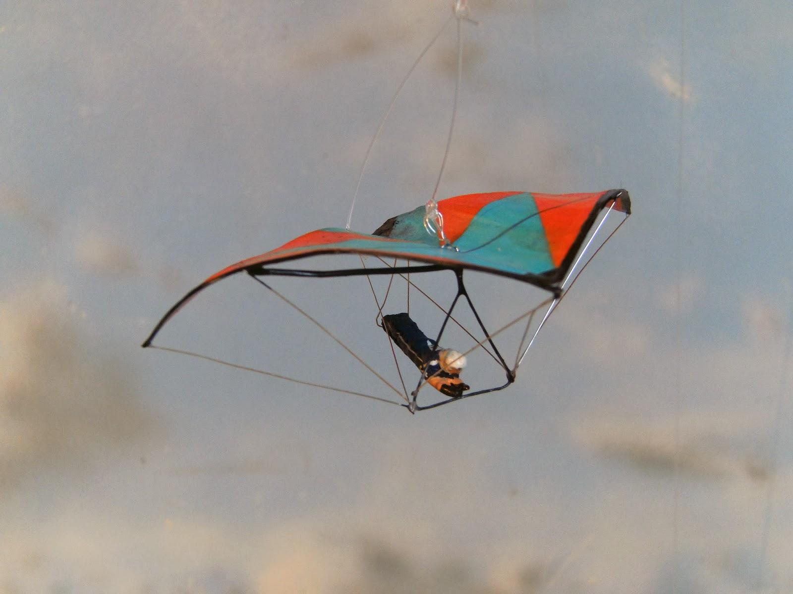 Happyscale-Modellbau: Drachenflieger / hang-glider