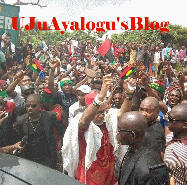"""If Nnamdi Kanu Is Not Produced Today There Will Be Trouble on an Unimaginable Scale""- IPOB"