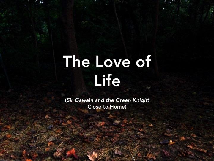 Gawain hero essay