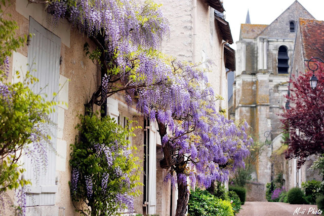 M-ii Photo : Les Châteaux de la Loire - Saint-Dye-Sur-Loire
