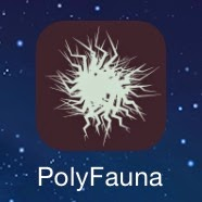 polyfauna logo app application iphone esteban