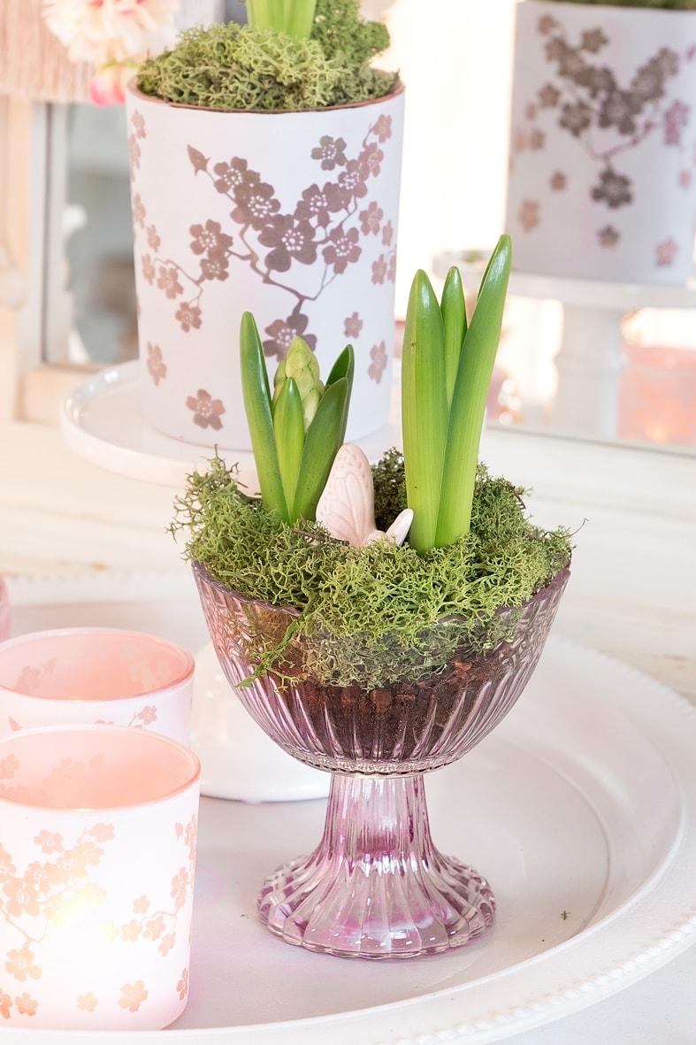 Mit Frühlingsblumen Wohnzimmer frühlingshaft dekorieren.