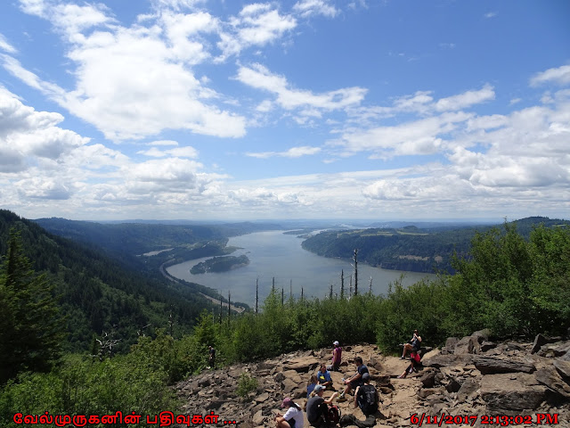 Angels Rest Trail Gorge View