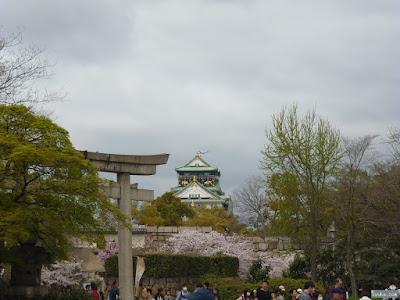 大阪城と飛行機と桜と鳥居