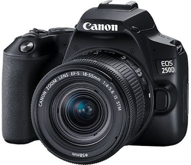 Canon EOS 250D (pack)
