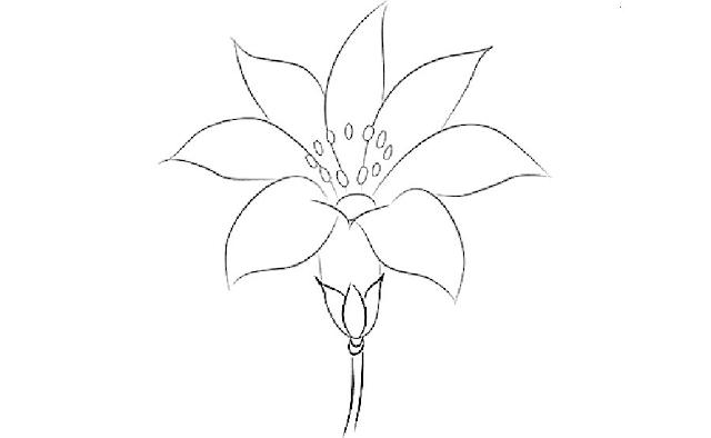 Gambar Mewarnai Bunga - 6