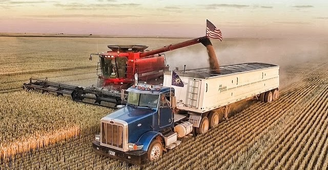H ρωσικής συγκομιδής σιταριού κτυπάει τις ΗΠΑ