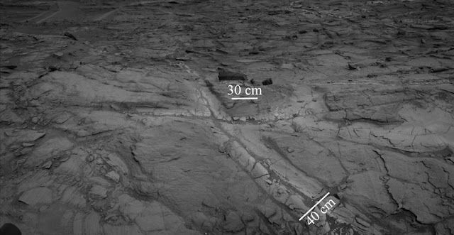 "Pale zones called ""halos"" border bedrock fractures visible in this 2015 image from NASA's Curiosity Mars rover. Measurements overlaid on the image offer a sense of scale for the size of these fractures. The rover team determined that the halos are rich in silica, a clue to the duration of wet environmental conditions long ago. The location is on the lower slope of Mars' Mount Sharp. Credits: NASA/JPL-Caltech"