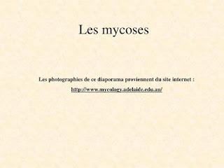 Les mycoses