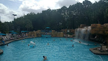 Stay Walt Disney World Swan And Dolphin Resort