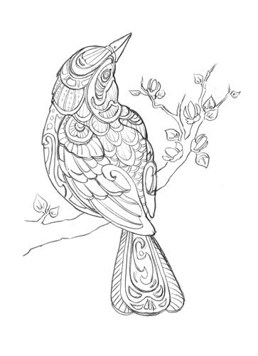 red winged blackbird coloring pages - photo#21