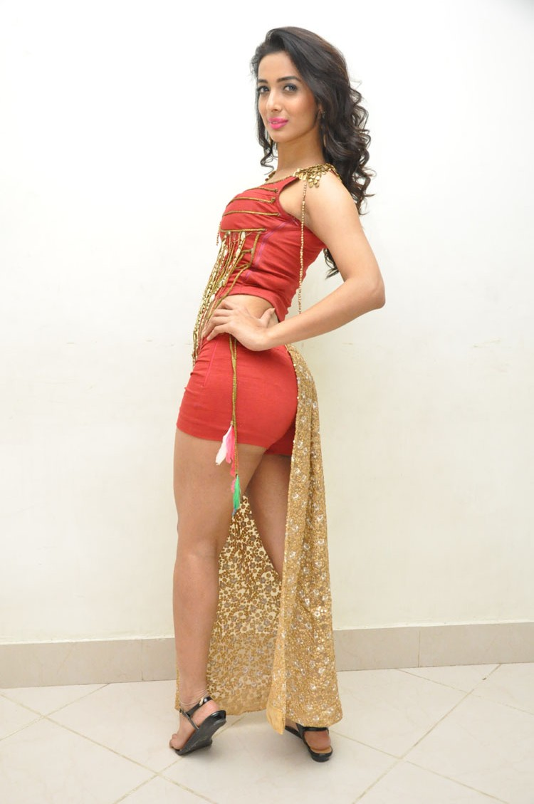 Heena Panchal New sizzling photo gallery-HQ-Photo-9