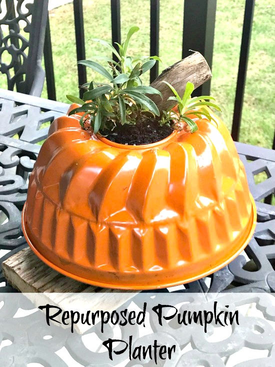 repurposed garden pumpkin planter