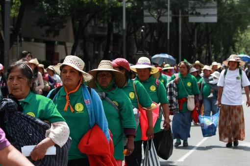 Campesinos mexicanos tomarán la capital en defensa de sus recursos naturales