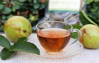 té de guayaba