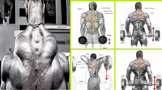Build-Towering-Trapeze-:-3-Moves-To-Bigger-Traps