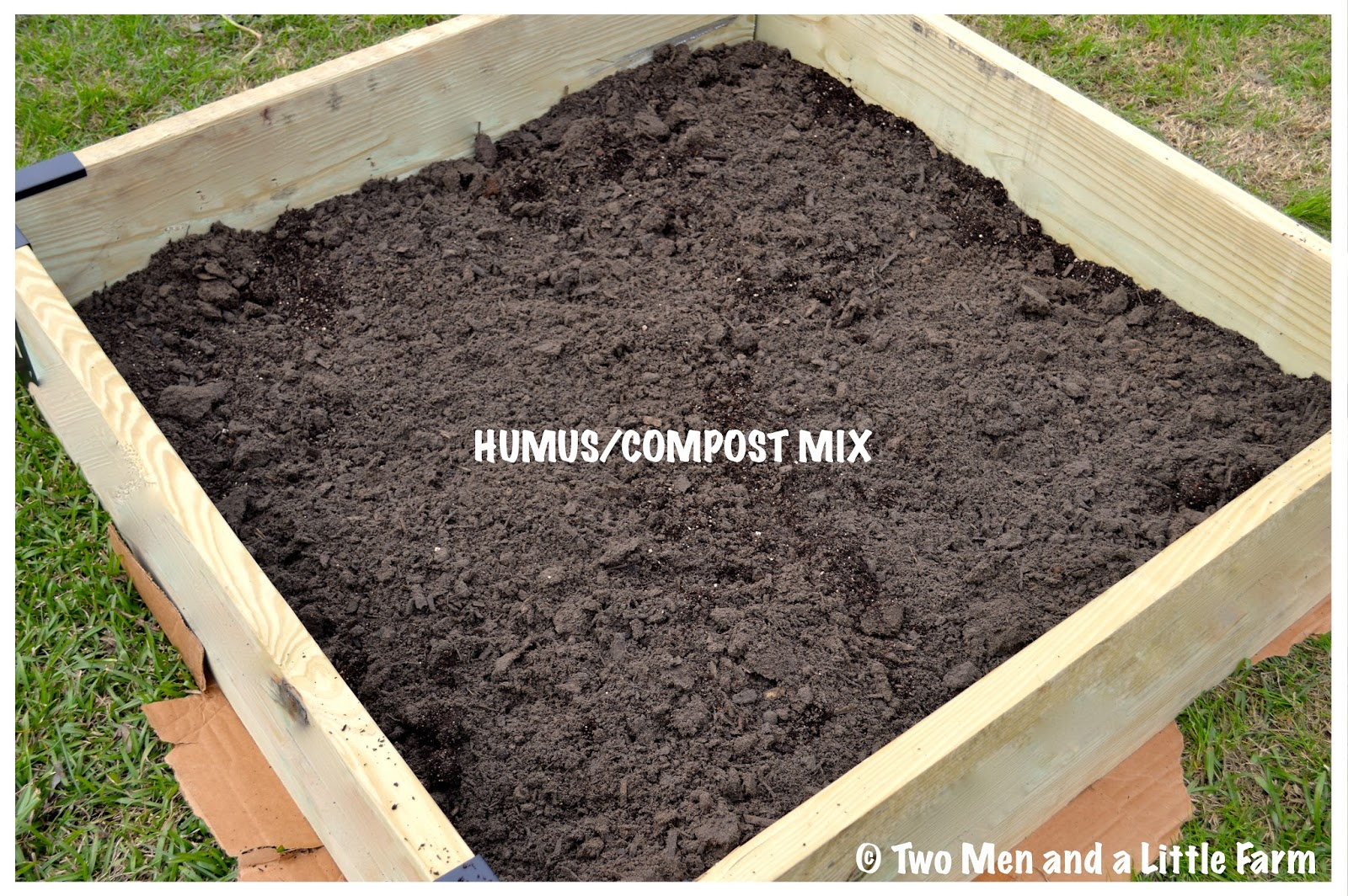 Soil for raised beds 28 images raised bed garden soil for Garden soil mix