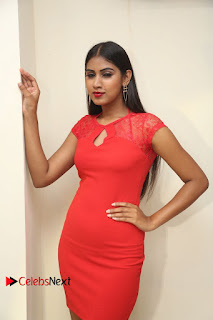 Actress Model Honey Pictures at Anoos Franchise Salon and Clinic Launch  0044.JPG