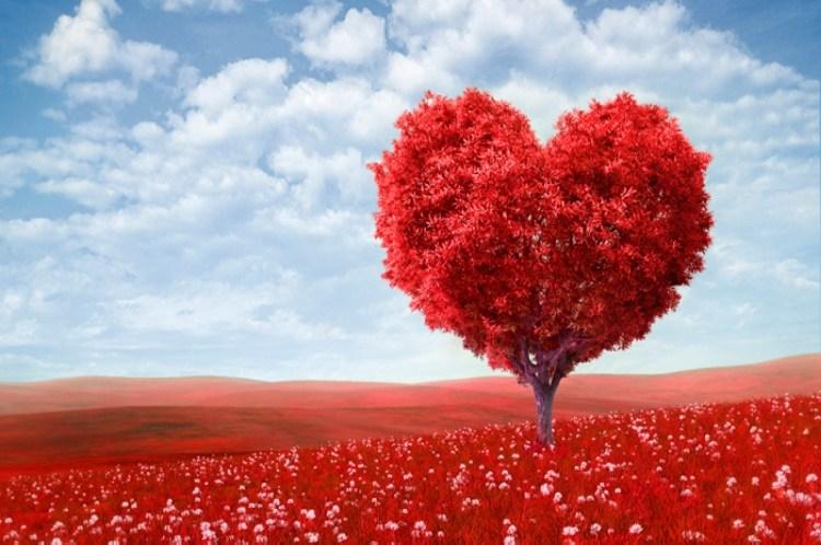 Confia En Cristo Corto Poema Amor Profundo