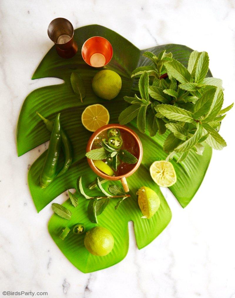 Recette de Cocktail Mule Mexicain - une recette facile et rapide avec de la Tequila et des épices pour vos apéros d'été ou une fête Mexicaine! by BirdsParty.fr @birdsparty #cocktail #apero #recetteapero #paeritifdinatoire #cocktailmexicain #fetemexicaine