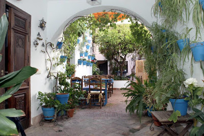 A patio with white walls and plants in blue pots growing up and down all around the place.