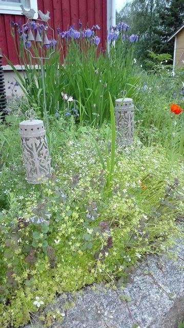puutarha kukkapenkki lyhdyt