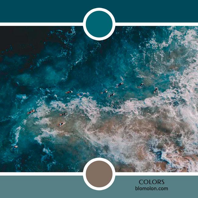variedad_en_color_color_73