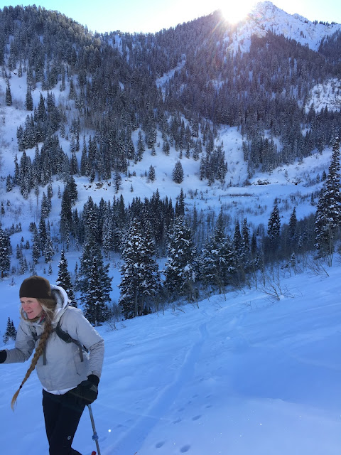 Silver Fork Backcountry Skiing