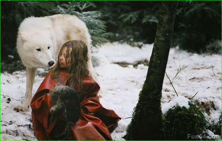 Innocent Girl Wallpaper White Wolf Heartwarming Photos Of Children Playing With