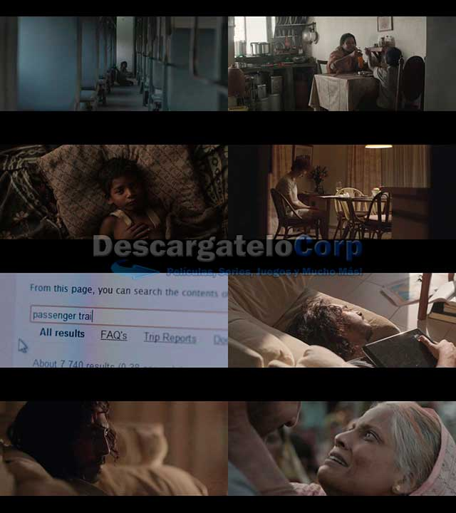 Un Camino a Casa (2016) DVDRip Español Latino