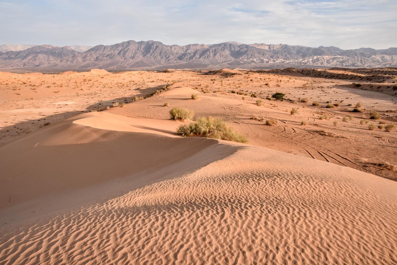 Wadi Araba | Jordan (لأردن Al-Urdunn, Jordania)