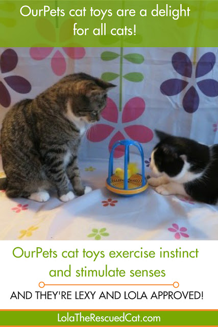 ourpets toys|interactive cat toys