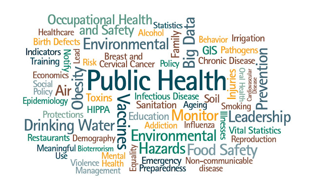 Public Policies Strategy That Can Help Improving Public Health