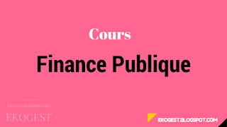 Finance Publique | Cours Finance Publique