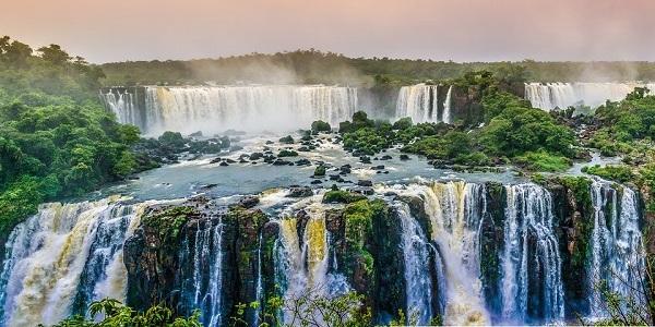 Brazil Nature