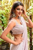Nidhi Agarwal at Ismart Successmeet-thumbnail-13