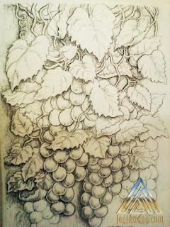 sketsa gambar Anggur untuk batu paras putih / batu paras jogja