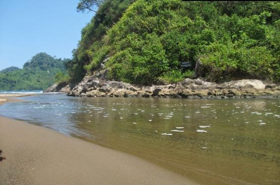 Wisata Mistis Dan Pantai Di Bandealit Jember Posucweb
